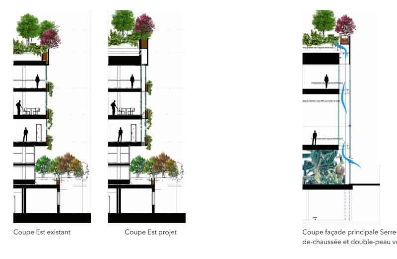Schéma de principe de la ventilation double-flux naturelle dans la double-peau et du principe de végétalisation. @Safia BENAYAD-CHERIF architecture