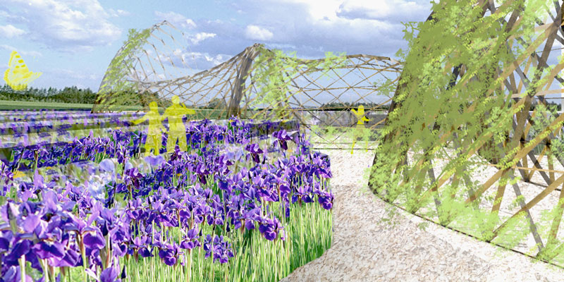 Iris Fantasia Concours Jardin Metis Safia Benayad Cherif